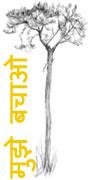 himachal-tree'
