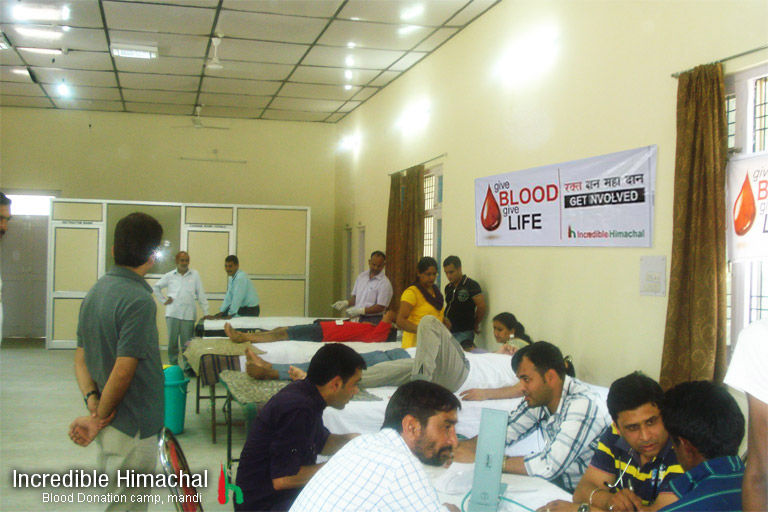 blood-donation-camp-himachal-mandi-may2013