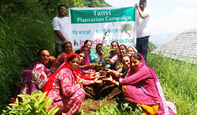 Tanvi Tree Plantation Phase-II -2016, Kotli